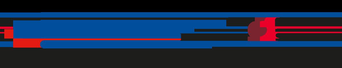 IFO – Istituti Fisioterapici Ospedalieri logo